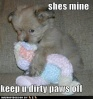 Funniest Picture of the day Cute-p10