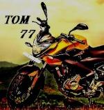 tom77
