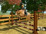 TheHorseDreamSims3
