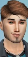 Les aides dans les Sims 4 3481-99