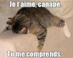 Bouclette