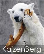 Kaizenberg