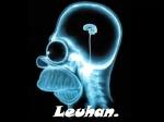 Leuhan9