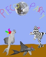 Pleco_Party