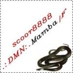 .:DMN:.Mamba|Founder