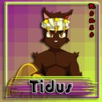 Tidus-eca