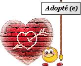 adopte