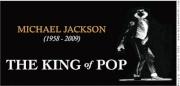 Vote For Michael  2547372463