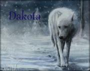 Dakota Silverwind
