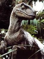 karanraptor