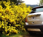 Chevrolet Tracker Plan 70/30 1513-6