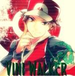 Vini Walker