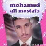 محمد على القوصى