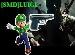 SMD/Luigi