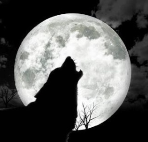 Wolfdonner