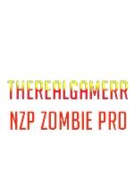 TheRealGamerr