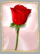 افكار لك سيدتي لخلق اجواء رومانسية ببيتك 1037060881