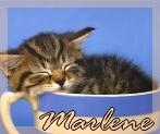 marlene018