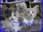 Cassou65