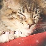 Sara-Kim