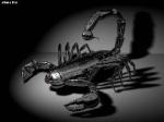 la scorpionne