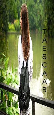 Taescaab