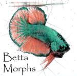BettaMorphs