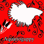 aquarioguppy
