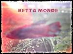 beta monde