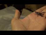 Scorpiongirl