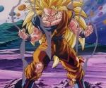 Goku22330