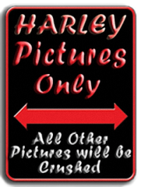 Les vieilles Harley Only (ante 84) du Forum Passion-Harley - Page 18 Hd_onl13