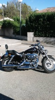 Le SPORTSTER 4155-5