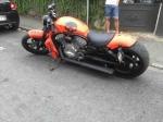 Jeune Rider 65