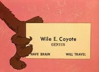 Coyote010