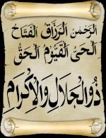 zinab abd elrahman