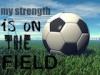 Soccerinsanity