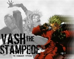 SuperVash