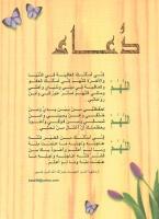 ابو حميد
