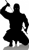 ninjaMAG