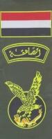 الصاعقة المصرية