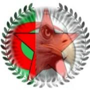 التصنيع العسكري العربي - Arab Military Industries 35567-74