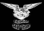 مقاتل مصري
