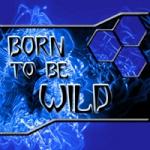 WildChild54