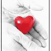 قلبي واحد ما يملكه اثنين