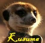 Kusuma the Meerkat Luver