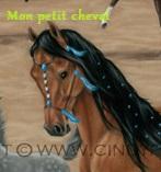 mon-petit-cheval