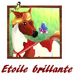 Etoile-Brillante