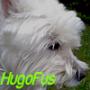 hugofus