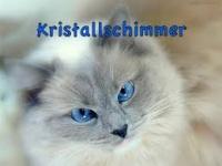 Kristallschimmer